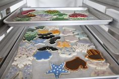 Holiday cookies hanging out in the pastry kitchen.