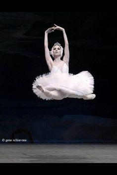 ZsaZsa Bellagio: Ballet Beautiful