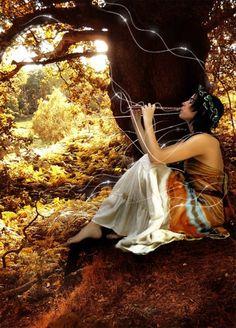 Fairy, wings, dreams