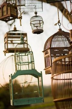 Vintage birdcages, with a candle in each one - this would be perfect. <3