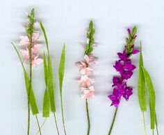 Jonesy's gladiolus a lovely tutorial and very effective looking
