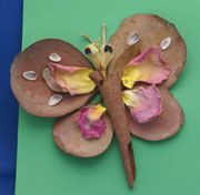 nature crafts, butterfli, bug crafts, natur craft, craft projects, natur bug, insect crafts, craft ideas, kid