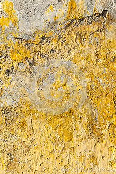 Google Image Result for http://www.dreamstime.com/old-textured-abandoned-yellow-wall-thumb25958519.jpg