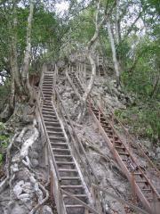 Ladder to Temple IV, Tikal, Guatemala
