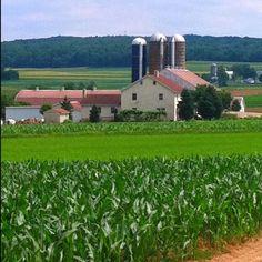 amish farm lancaster, pa.