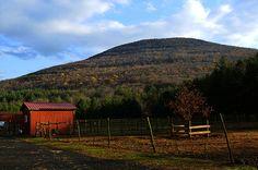 NY_Woodstock_Farm_02 by chiang_benjamin, via Flickr flickr, season, chiangbenjamin, nywoodstockfarm02