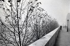 The Quais at early morning, Paris by André Kertész • 1929 • As part of the Bruce Silverstein Gallery — Estate of André Kertész (1925-1930: Paris)