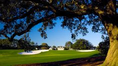 The Masters in Augusta. Cross this off your bucket list with Sports Power Weekends: http://www.sportspowerweekends.com/2012-masters-travel-packages