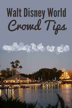 Walt Disney World Crowd Tips #disney #travel #familytravel