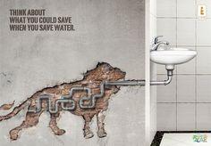 Al Ain Zoo: World Water Day, Lion