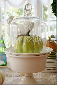 Back Porch Musings blog/a fall display under a cloche
