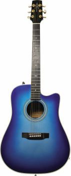 I don't know why, especially because I don't know how to play, but I've always wanted a blue acoustic guitar.