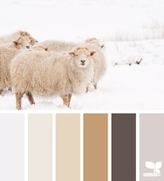 Winter Wool. I love this palette, such cozy colors. :-)