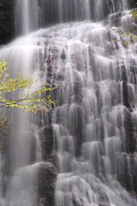 Waterfalls in the Smokies
