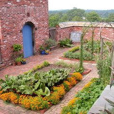 This is one of my favorite vegetable gardens.  It is on a private estate in Pennsylvania and is one of the last designs that Rosemary Verey did State side before she died.  Proof that vegetable gardens don't have to be hidden in the back yard.  The orange are marigolds, a variety similar to Starfire Signet Marigolds available from Seed Savers Exchange.