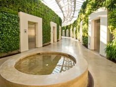 Living green walls at Longwood Gardens (and these are all bathrooms) Beautiful Bathrooms!! The inside is new age too!