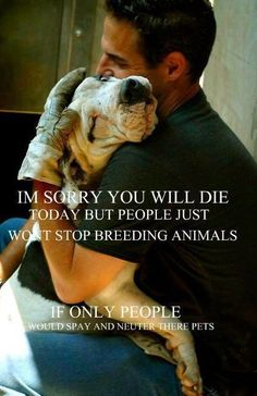 Open your hearts to other living beings besides the human species.  Look how they suffer...at our hands.  SPAY AND NEUTER PLEASE!!  ADOPT, DON'T SHOP.  You shop for your pet, you don't love animals!!!  Go buy an inanimate piece of art!!!!!