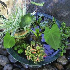 Outdoor Water Features - Bob Vila