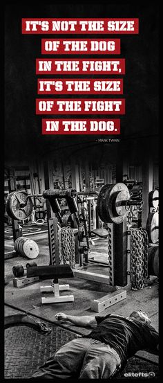 fit quot, mountains, cardio, dogs, bodybuilding, mansion 49, mansions, fighting training, train motiv