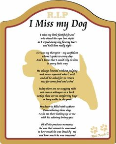 The Memorial: Check Out I Miss My Cairn Terrier Dog ... 8x10 (Male) Poem with Full Color Graphics - Professionally Printed onto Chromaluxe Arch Panel with Easel Back (poem for bereavement, missing my dog, memorial for dog, Plaque for Dog (CFS-810P-515)