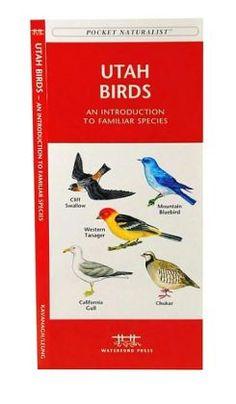 Pocket Naturalist: Utah Birds