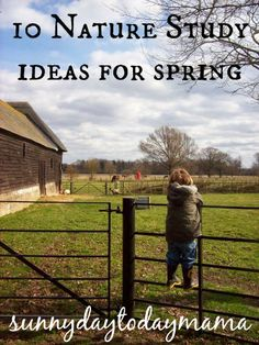 10 Nature Study ideas for spring http://sunnydaytodaymama.blogspot.co.uk/2014/03/10-nature-study-ideas-for-spring.html