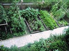 vegetable garden layout, from Skippy's Vegetable Garden