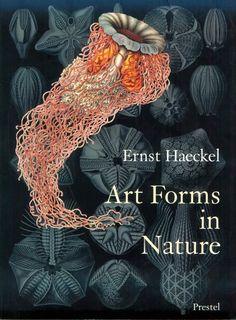 Art Forms in Nature: Ernst Haeckel