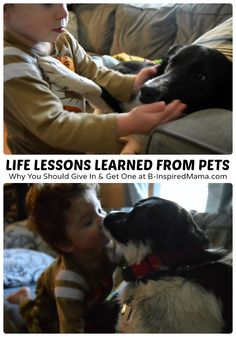 Life Lessons for Kids from their Pets [#sponsored #SwifferEffect] at B-InspiredMama.com  #kids #pets #kidsandpets #parenting #kbn