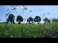 Midsummer Meditation - YouTube