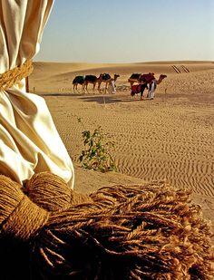 The Caravan - UAE