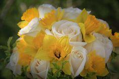 Daffodil n roses