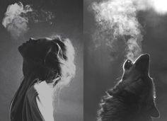 moon, wolf, dream, black white, cafe art, dog, smoke, cubicl, photographi
