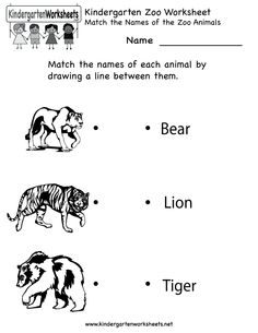 Kindergarten Zoo Worksheet Printable