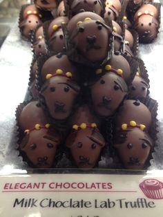 """Saw these """"chocolate labs"""" at Whole Foods in Atlanta. Funny I call my Chocolate Lab """"My Chocolate Truffle"""" cause he's so cute iI could eat him! I going to look for these!"""