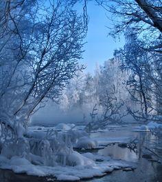 Beautiful Winter Scenes