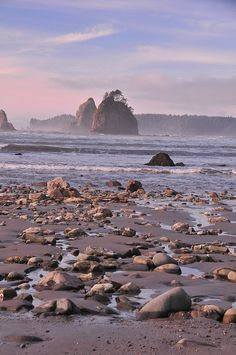 Pacific Northwest beaches