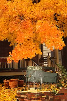 Autumn Antiques