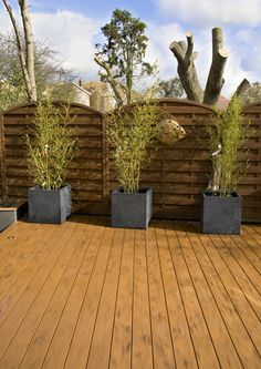 Beautiful garden decks on pinterest roof gardens decks for Beautiful garden decking