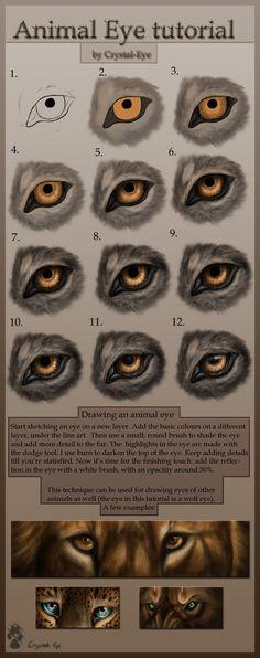 Animal Eye tutorial by ~Crystal-Eye on deviantART deviantart, animals, art project, anime eyes tutorial, cg art, crystaley, art worksheetshandout, eye tutori, anim eye
