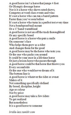 A good horse.