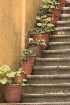 For our front steps