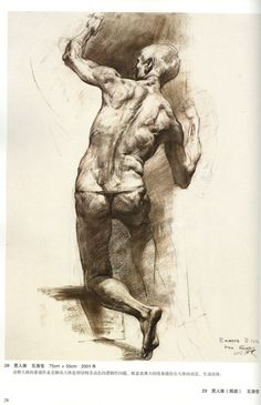 "Repin State Academic Institute ""Anatomical & Figure Drawing 2"" (Chinese) figur draw, figure drawings, academ institut"