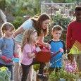 Organize a community garden