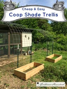 Cheap and Easy Coop Shade Trellis