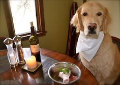 """Paleo for your dog! --- raw ( human ) food for your dog --- cheaper than the better """" dog foods""""."""