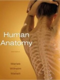 Anatomie Et Physiologie Humaines Marieb Pdf Download