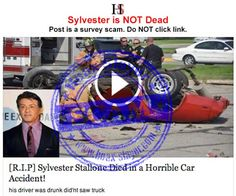 SURVEY SCAM - 'Sylvester Stallone Died in Horrible Car Accident'