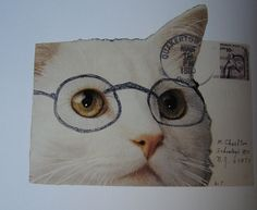Kitty mail by Susan #mailart