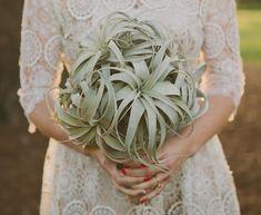 fun airplant bouquet